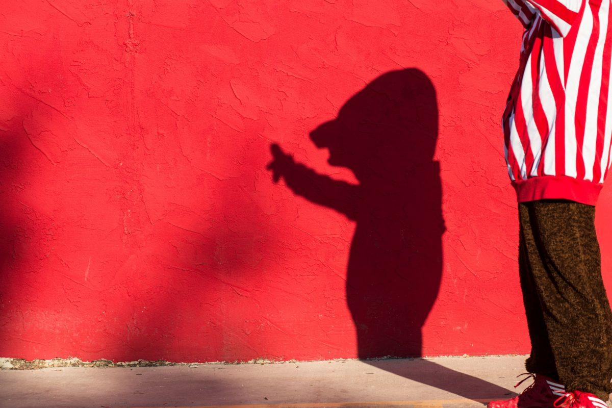 Bucky shadow red wall