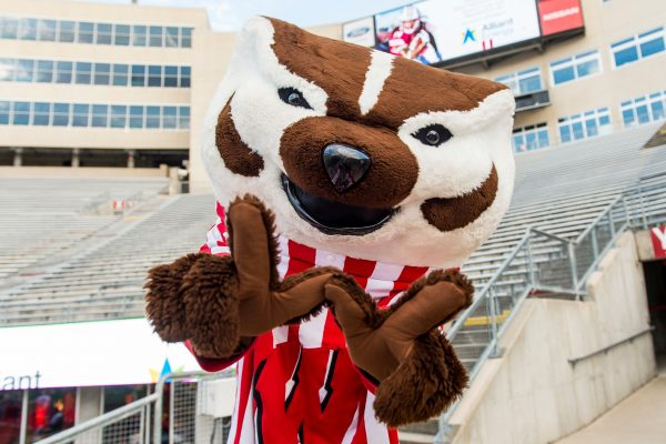 Bucky badger at family fun day